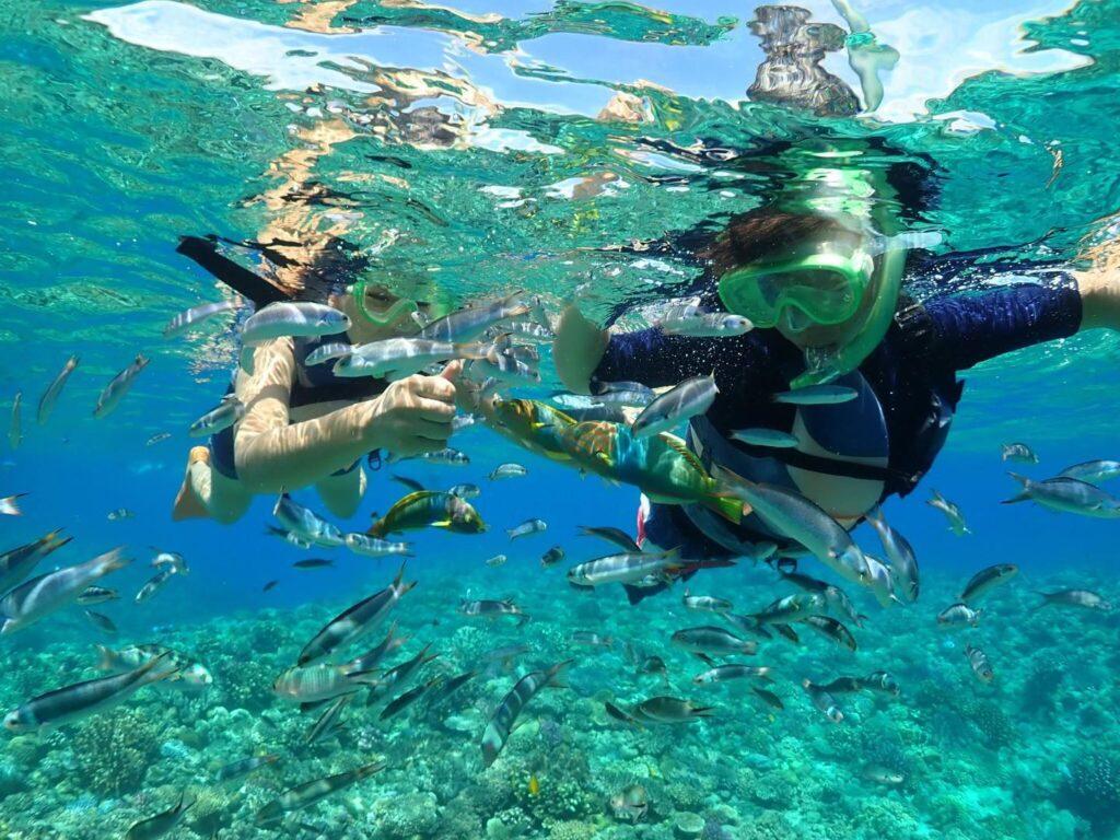 水納島,シュノーケリング,ツアー,友達と,カップルで